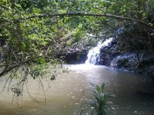 Freshwater Fishing Snag 3